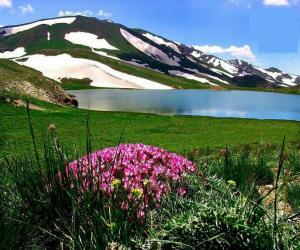تور طبیعت گردی آذربایجان غربی |دالامپر و مراتع میرگ زیارت |
