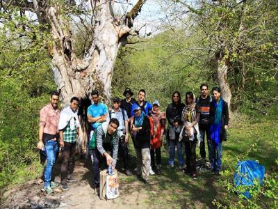 تور یک روزه جنگل الیمستان |هفته دوم اردیبهشت|