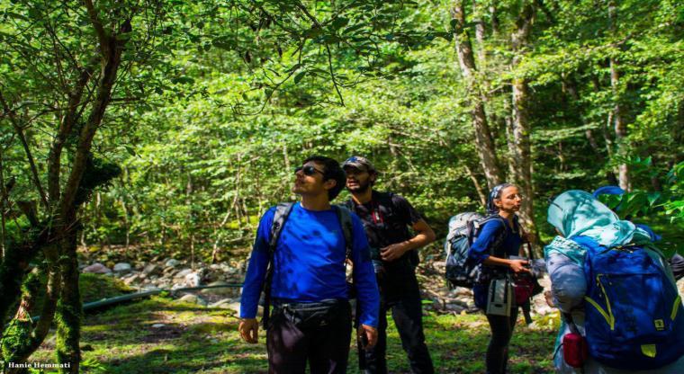 تور یک روزه جنگل سرپوش تنگه |یک سفر یک کتاب با نسیم مرعشی|