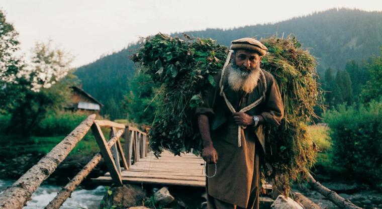 تور کشمیر