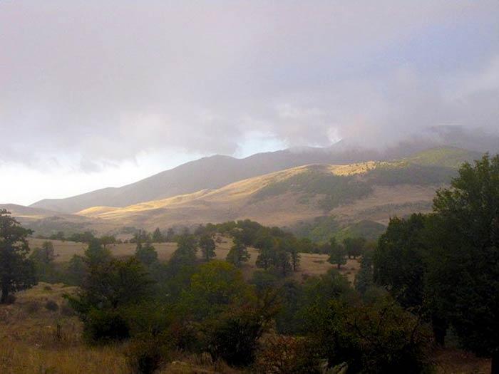 تور جنگل ابر|سوار بر ابر ها|