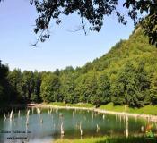 تور دریاچه چورت تور چشمه های باداب سورت