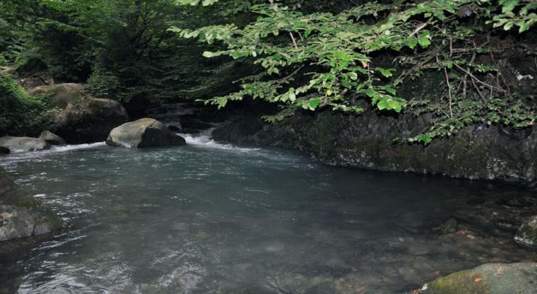 تور رودخانهنوردی در جنگل های دیورش |هفته چهارم شهریور|