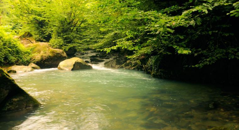 تور رودخانهنوردی در جنگل های دیورش  هفته سوم شهریور 